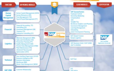 Navigating the SAP Skills Map with Learning Hub